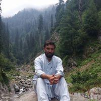 Syed N Shah